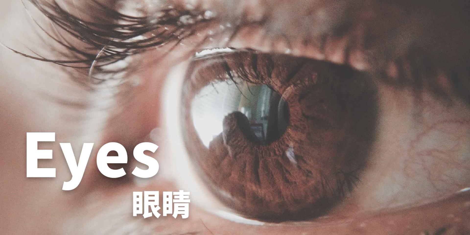 眼鏡痕癢,AQ Bio消毒殺菌噴霧、殺菌達99.9999%, 對抗濕疹,暗瘡,皮膚敏感,念珠菌,鼻敏感,喉嚨痛, 助皮膚修護細胞, 產生抗菌能